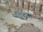 Trap on back patio
