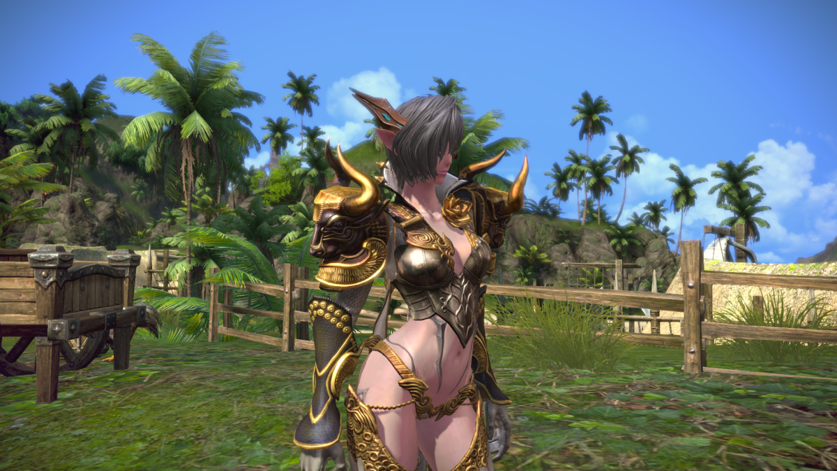 Tera – Gunner Leveling to 30s and 40s